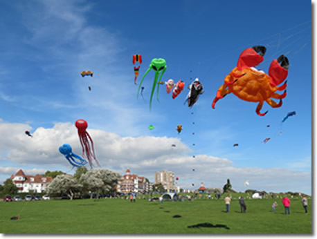 Kite Display